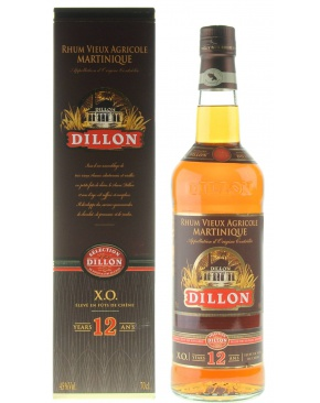 Dillon - 12 year old